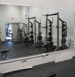 Зеркала в тренажерный зал 2200 1500 мм.